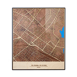 Medinis Šiaulių žemėlapis